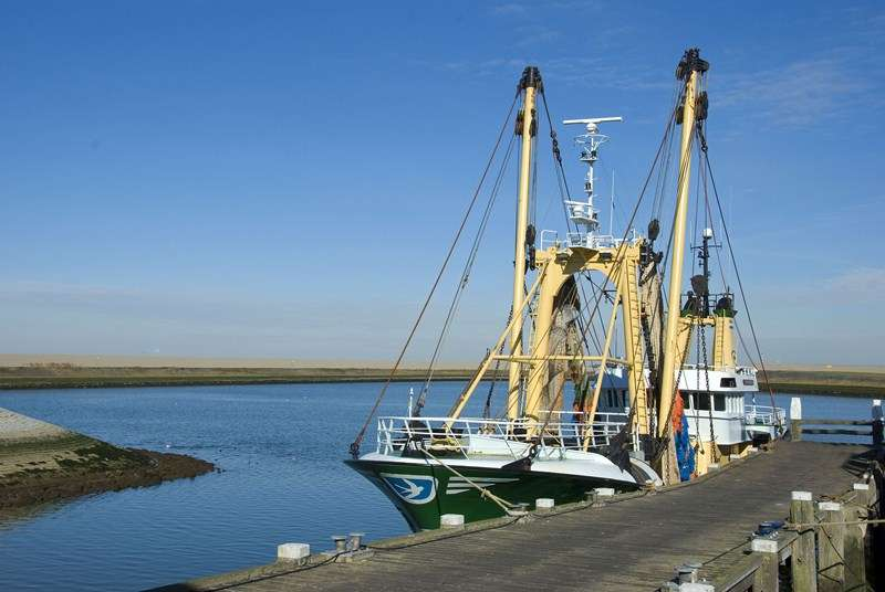 New government support for England's fishing industry
